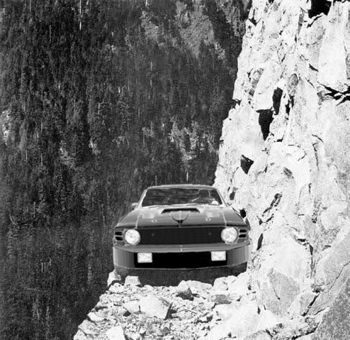 Mustang on the edge